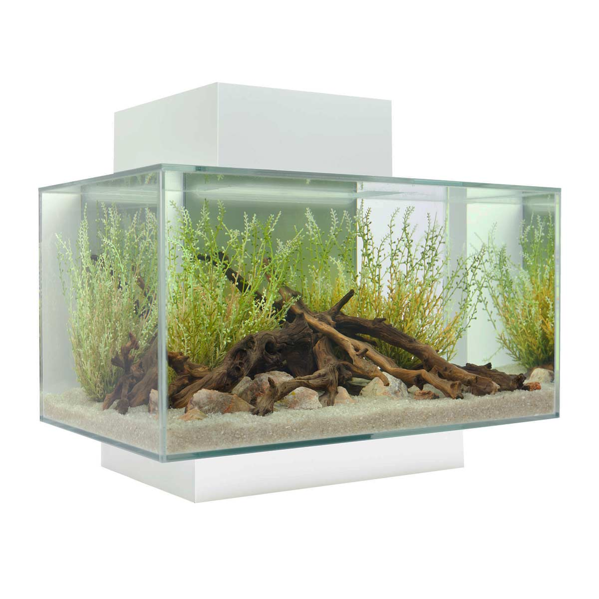 Fluval edge fish tank 23 litre white for Fluval fish tank